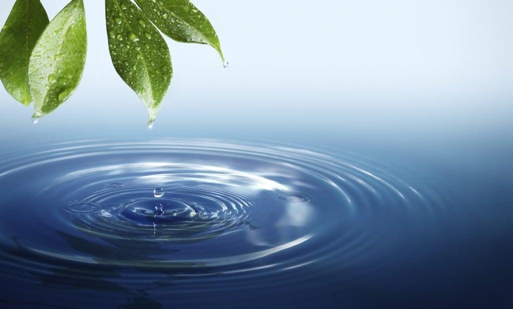 water life crop - Szamański sposób na wodę