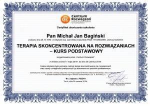 M. Bagiński TSR1 300x212 - Sesja online