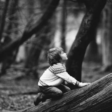 chłopiec i drzewo